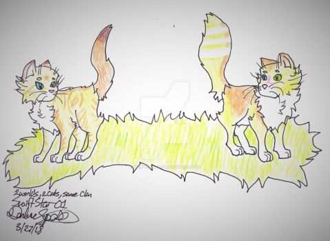 Two Worlds, Two Cats, Different Destinies by Swiftstar01
