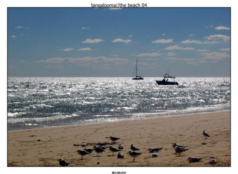 Tangalooma - The Beach 04 by fullcollapse