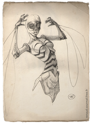 femme insecte by Spacesam