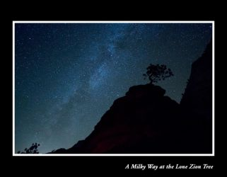 A Milky Way at the Lone Zion Tree by liquidreflex