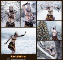 Wintersday - Cosplay Collage by LiviaZita