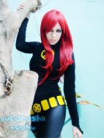 jean grey 4 by lulysalle