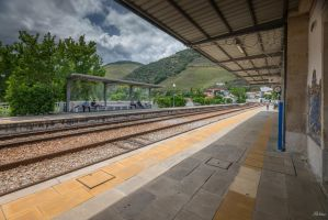 sweet Portugal - train station in Pinhao by Rikitza