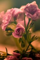 Its only love by rainman65