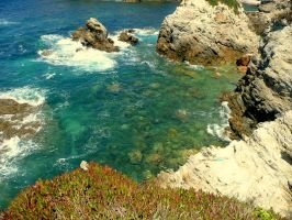 Paradise Cove by Xispes