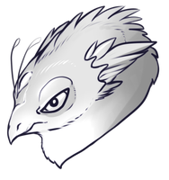 Angry Hatchling by lynxalittle