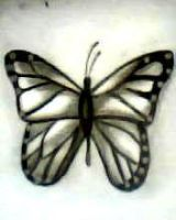 2012 drawing - butterfly ^___^ by nielopena