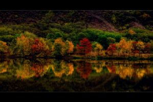 colours of time by stg123