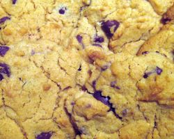 Cookie Texture 1-Choc Chip by ErrantDreams