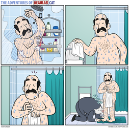 The Adventures of Regular Cat - Shower by tomfonder