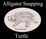Reptile Buddies Alligator Snapping Turtle by UnicronHound