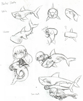 Noctis' Sharks by SilviShinyStar