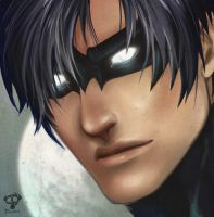Nightwing by dathron