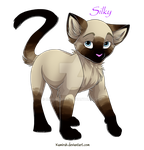 Silky the Siamese cat by Darumemay