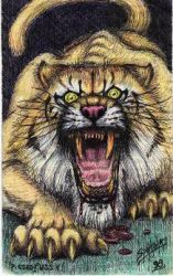 sabre tooth cat by PaulSpatola