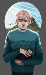 The picture of the boy and his bird by fyrkfyrk