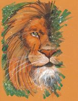 Marker : Aslan by KidNotorious