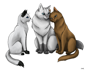 Cat Family by Scink