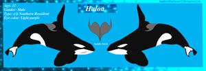 Haloa Reference Sheet by SapphireBlueOcean12