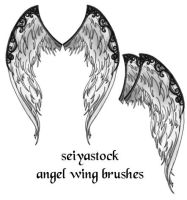 Ornate Angel Wing brushes by seiyastock