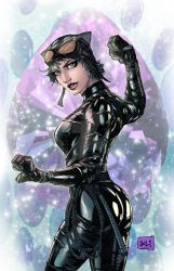 Catwoman Colors by hanzozuken