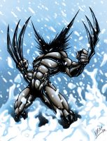 wolverine in the snow2 by VASS-comics