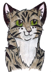 Character from Mintpaw's quest by MintFireTheCat
