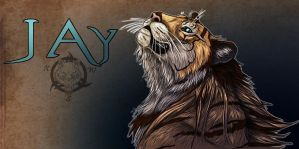 Jay Banner by Dalkur