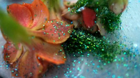 Flowers and ice 08 by ALP-Stock