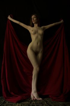 Carrie Butterfly Turner 5343 by TWPhotos