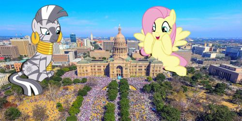 Mares join the Women's March by TheOtterPony