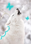 Soul Howler by Soul-Wolf-Of-Spirits