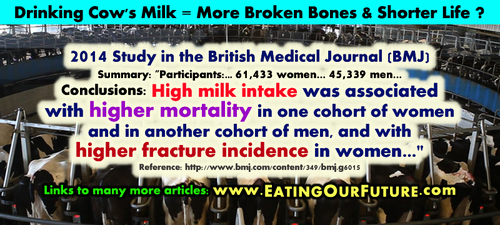 Drink Cow Milk 4 More Broken Bones + Shorter Life by eatingourfuture