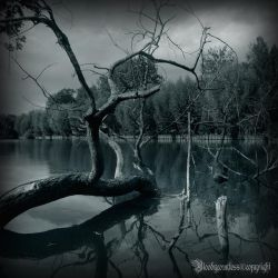 The lake by CountessBloody