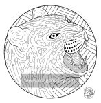 Amur leopard (The Exotic Colouring Book)