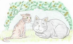 Inquisitive Link chapter 'Bulbous cat'. by Froodals