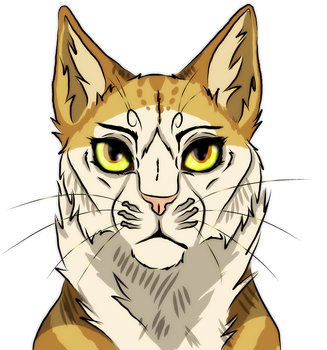 Pixiefoot headshot AT by Forever--Tainted
