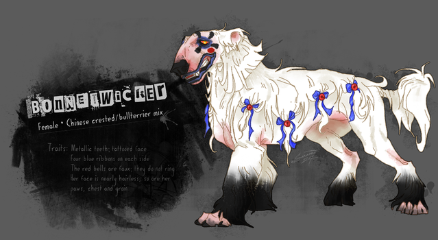 Bonnetwicker reference sheet by Saranna