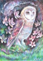 Spring Owl by snowmarite