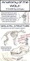 Anatomy of a Wolf - A Tutorial by rosiesinner