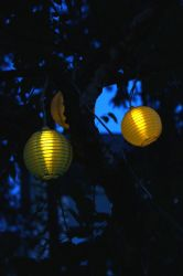 Garden lights by Lolias