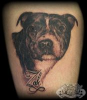 Dog Portrait 2 by state-of-art-tattoo
