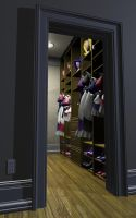 Closet of a Maid by DovSherman