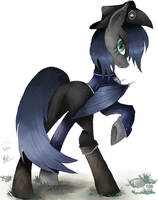 [Collab] Nightpony guard! by SilviaWing