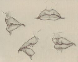 Lips by sociaLvAmpyres