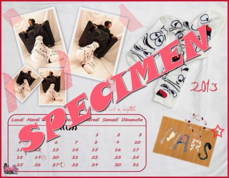 Calendrier-Calendar-2013 by Chaussette-Coolsocks