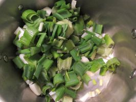 Chopped Baby Vidalia Onions by Windthin