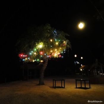 Christmas Lights in GT by stayoutoftrouble