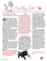 Healthy Pets Newsletter PDF by Sarcadoesis