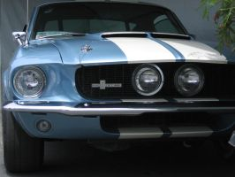 '67 Shelby Mustang GT 500 by guitaristbryan